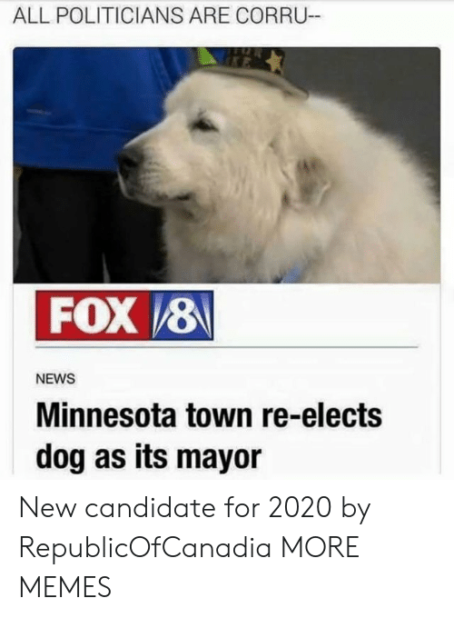 Dank, Memes, and News: ALL POLITICIANS ARE CORRU-  FOX 8  NEWS  Minnesota town re-elects  dog as its mayor New candidate for 2020 by RepublicOfCanadia MORE MEMES