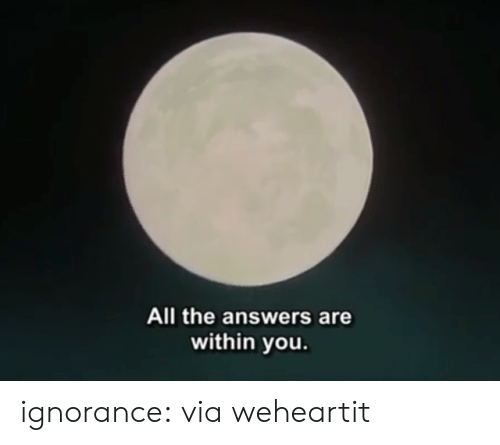 Target, Tumblr, and Blog: All the answers are  within you ignorance:  via weheartit