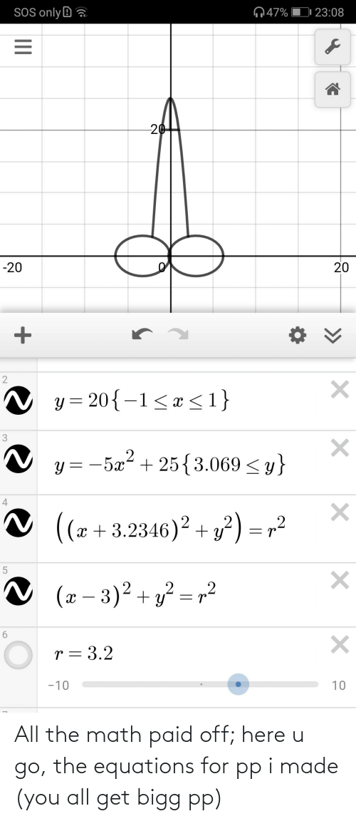 I Made You: All the math paid off; here u go, the equations for pp i made (you all get bigg pp)