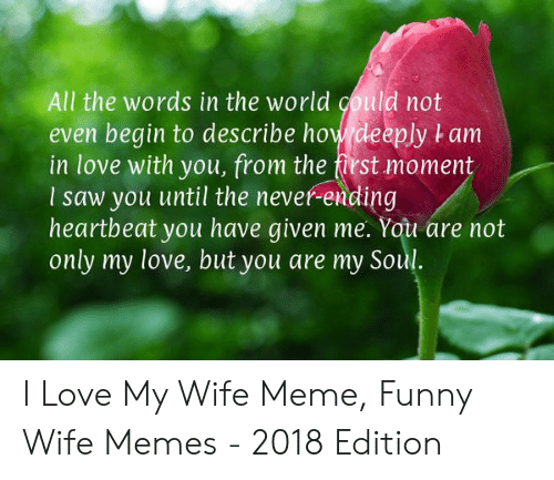 Funny, Love, and Meme: All the words in the world could not  even begin to describe how deeply t am  in love with you, from the first moment  I saw you until the never-ending  heartbeat you have given me. You are not  only my love, but you are my Soul. I Love My Wife Meme, Funny Wife Memes - 2018 Edition