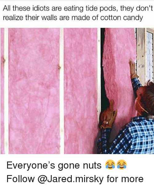 Candy, Funny, and Jared: All these idiots are eating tide pods, they don't  realize their walls are made of cotton candy Everyone's gone nuts 😂😂 Follow @Jared.mirsky for more