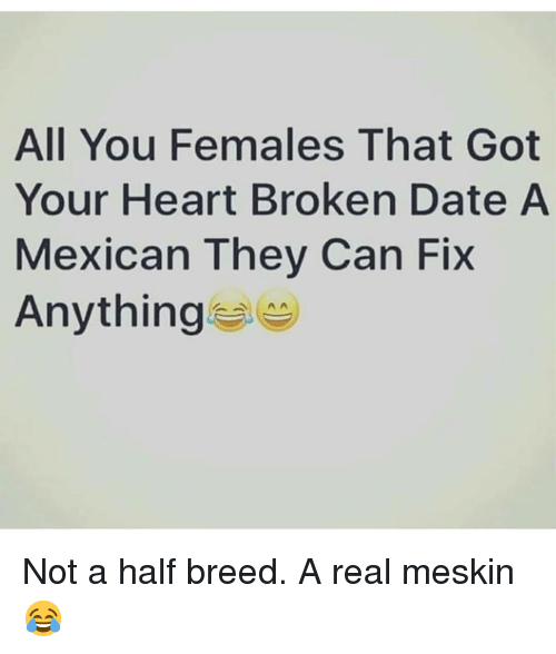 half breed: All You Females That Got  Your Heart Broken Date A  Mexican They Can Fix  Anything Not a half breed. A real meskin😂