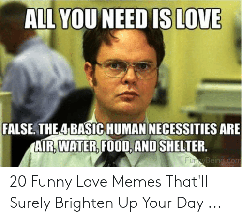 Food, Funny, and Love: ALL YOUNEED IS LOVE  FALSE. THE4 BASIC HUMAN NECESSITIES ARE  AIR.WATER,FOOD,AND SHELTER.  Being.con 20 Funny Love Memes That'll Surely Brighten Up Your Day ...