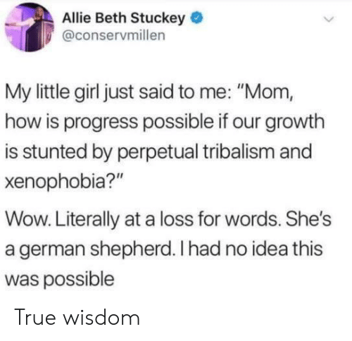 """True, Wow, and German Shepherd: Allie Beth Stuckey  @conservmillen  My little girl just said to me: """"Mom,  how is progress possible if our growth  is stunted by perpetual tribalism and  xenophobia?""""  Wow. Literally at a loss for words. She's  a german shepherd. Ihad no idea this  was possible True wisdom"""