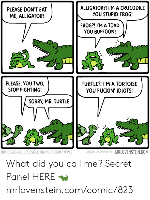 tortoise: ALLIGATOR?! I'M A CROCODILE  YOU STUPID FRO0G!  PLEASE DON'T EAT  ME, ALLIGATOR!  FROG?! I'M A TOAD  YOU BUFFOON!  PLEASE, YOU TWO,  STOP FIGHTING!  TURTLE?! I'M A TORTOISE  YOU FUCKIN' IDIOTS!  SORRY, MR. TURTLE  @MrLovenstein MRLOVENSTEIN.COM  THIS COMIC MADE POSSIBLE THANKS TO DAN PAPPAS What did you call me?  Secret Panel HERE 🐊 mrlovenstein.com/comic/823