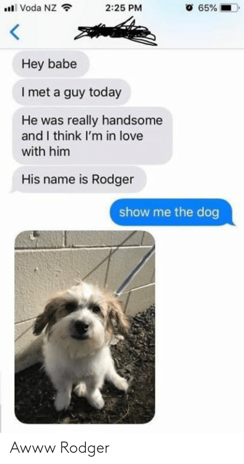 Love, Relationships, and Today: alll Voda NZ令  2:25 PM  Hey babe  I met a guy today  was really handsome  and I think I'm in love  He  with him  His name is Rodger  show me the dog Awww Rodger