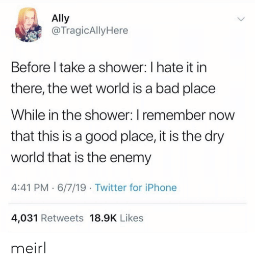 Bad, Iphone, and Shower: Ally  @TragicAlly Here  Before I take a shower: I hate it in  there, the wet world is a bad place  While in the shower: I remember now  that this is a good place, it is the dry  world that is the enemy  4:41 PM 6/7/19 Twitter for iPhone  4,031 Retweets 18.9K Likes meirl
