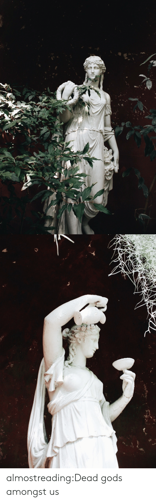 Tumblr, Blog, and Http: almostreading:Dead gods amongst us