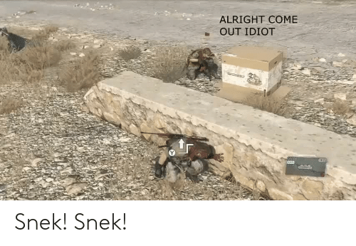 Idiot, Alright, and  Come: ALRIGHT COME  OUT IDIOT Snek! Snek!