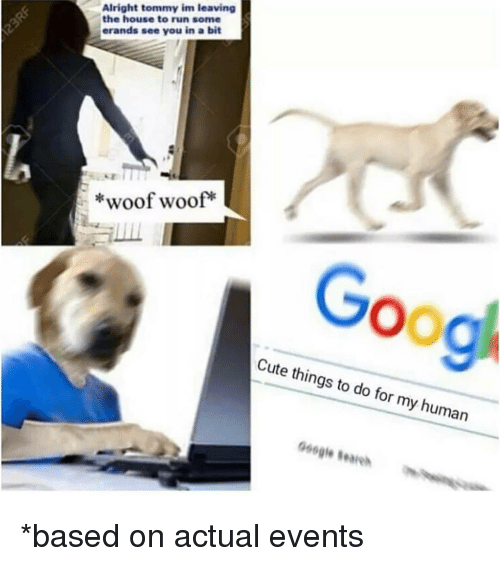 Cute, Google, and Memes: Alright tommy im leaving  the house to run some  erands see you in a bit  *woof woof*  Goog  Cute things to do for my human  066  Google eare *based on actual events