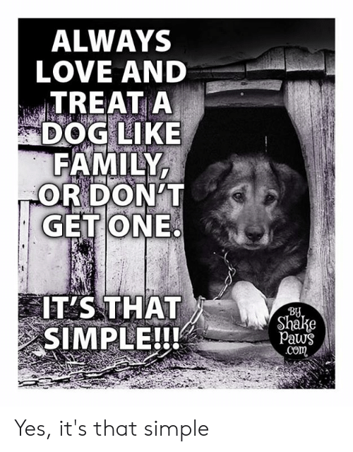 Family, Love, and Memes: ALWAYS  LOVE AND  TREAT A  DOG LIKE  FAMILY  OR DON'T  GET ONE  IT'S THAT  SIMPLE!!!  By  Shake  Paws  .Com Yes, it's that simple
