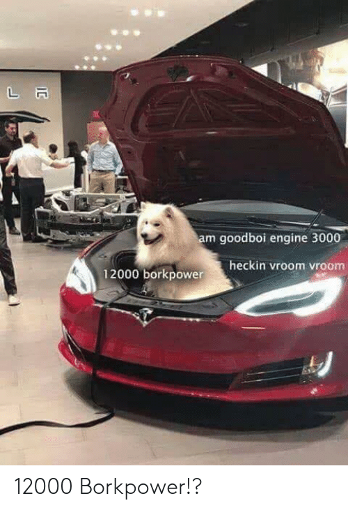 Heckin: am goodboi engine 3000  heckin vroom vroom  12000 borkpower 12000 Borkpower!?