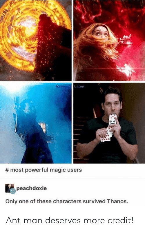 Magic, Powerful, and Only One: am  #most powerful magic users  peachdoxie  Only one of these characters survived Thanos Ant man deserves more credit!