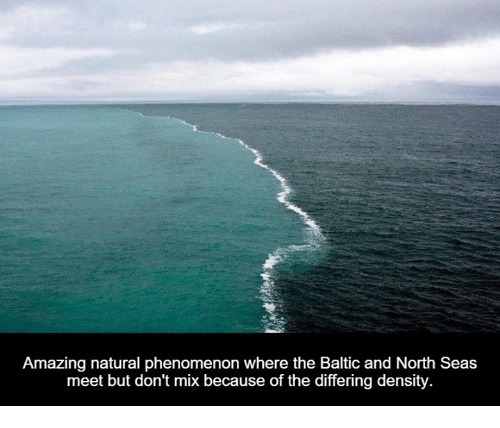 north sea: Amazing natural phenomenon where the Baltic and North Seas  meet but don't mix because of the differing density