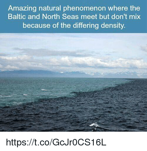 north sea: Amazing natural phenomenon where the  Baltic and North Seas meet but don't mix  because of the differing density https://t.co/GcJr0CS16L
