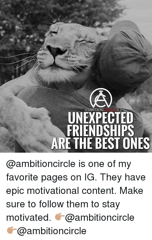 Memes, Content, and Ambition: AMBITION  UNEXPECTED  FRIENDSHIPS  ARE THE BEST ONES @ambitioncircle is one of my favorite pages on IG. They have epic motivational content. Make sure to follow them to stay motivated. 👉🏽@ambitioncircle 👉🏽@ambitioncircle