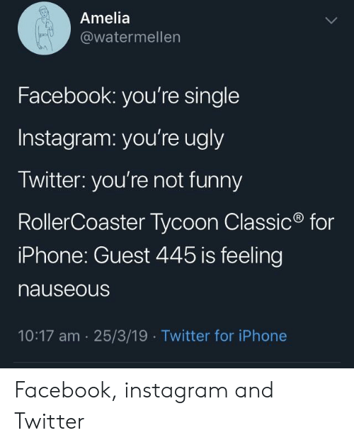rollercoaster: Amelia  @watermellen  Facebook: you're single  Instagram: you're ugly  Twitter: you're not funny  RollerCoaster Tycoon Classic  iPhone: Guest 445 is feeling  nauseous  for  10:17 am 25/3/19  Twitter for iPhone Facebook, instagram and Twitter