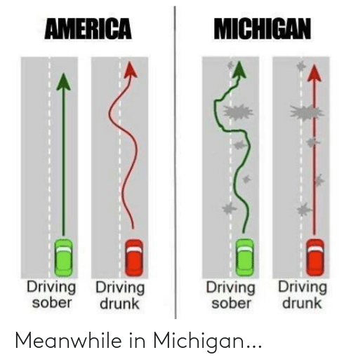 meanwhile: AMERICA  MICHIGAN  Driving Driving  Driving Driving  sober  drunk  sober  drunk Meanwhile in Michigan…