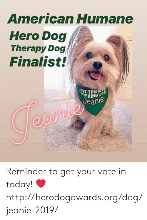American Humane Hero Dog Therapy Dog Finalist Pet Theral