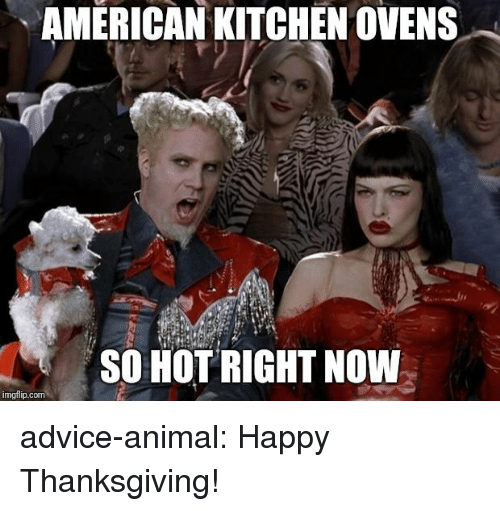Advice, Thanksgiving, and Tumblr: AMERICAN KITCHEN OVENS  SO HOT RIGHT NOW  imgflip.com advice-animal:  Happy Thanksgiving!