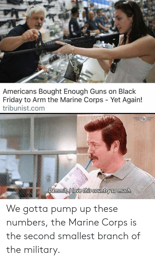 Dammits: Americans Bought Enough Guns on Black  Friday to Arm the Marine Corps - Yet Again!  tribunist.com  Dammits love this cCountry so much We gotta pump up these numbers, the Marine Corps is the second smallest branch of the military.