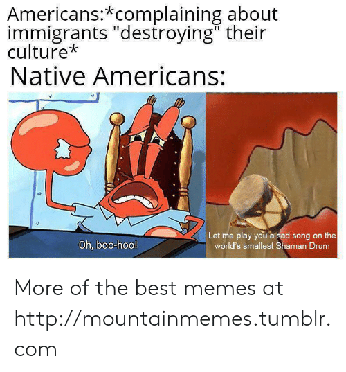 """Boo, Memes, and Tumblr: Americans:*complaining about  immigrants """"destroying"""" their  culture*  Native Americans:  Let me play you a sad song on the  world's smallest Shaman Drum  Oh, boo-hoo! More of the best memes at http://mountainmemes.tumblr.com"""