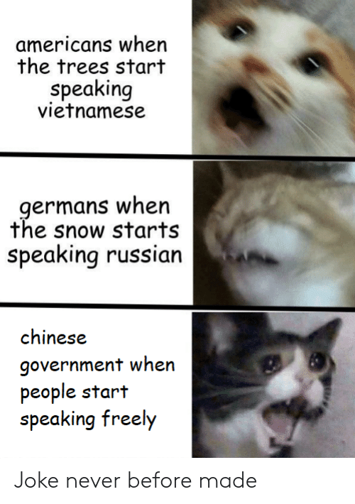 germans: americans when  the trees start  speaking  vietnamese  germans when  the snow starts  Speaking russian  chinese  government when  people start  speaking freely Joke never before made