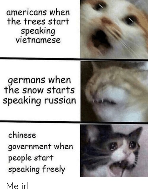 Vietnamese: americans when  the trees start  speaking  vietnamese  germans when  the snow starts  speaking russian  chinese  government when  people start  speaking freely Me irl