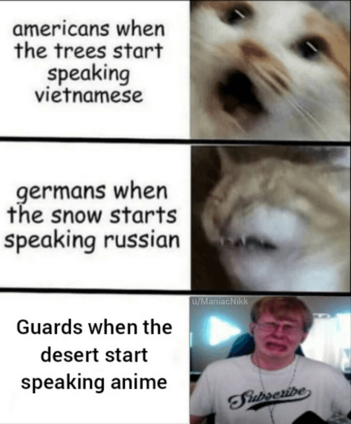 Anime, Snow, and Trees: americans when  the trees start  speaking  vietnamese  germans when  the snow starts  speaking russian  u/ManiacNikk  Guards when the  desert start  speaking anime  TFiurseribe