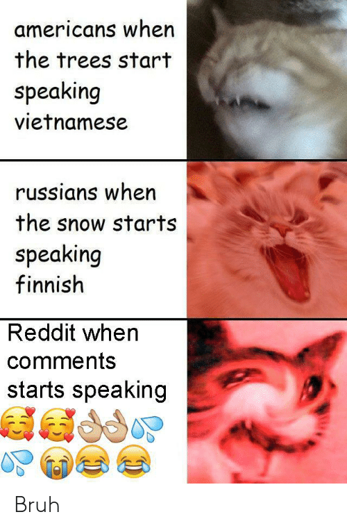 Vietnamese: americans when  the trees start  speaking  vietnamese  russians when  the snow starts  speaking  finnish  Reddit when  comments  starts speaking Bruh