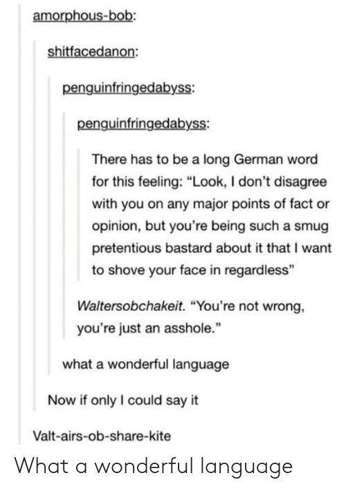 """Pretentious, Say It, and Word: amorphous-bob:  shitfacedanon:  penguinfringedabyss:  penguinfringedabyss:  There has to be a long German word  for this feeling: """"Look, I don't disagree  with you on any major points of fact or  opinion, but you're being such a smug  pretentious bastard about it that I want  to shove your face in regardless""""  Waltersobchakeit. """"You're not wrong,  you're just an asshole.""""  what a wonderful language  Now if only I could say it  Valt-airs-ob-share-kite What a wonderful language"""