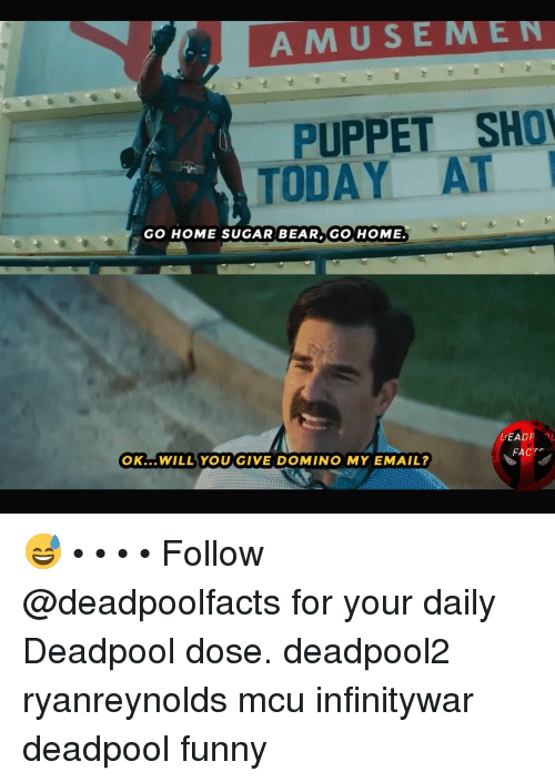 Funny, Memes, and Deadpool: AMUSEMEN  PUPPET SHO  TODAY AT  GO HOME SUGAR BEAR GO HOME.  DEAD  OK...WILL YOU GIVE DOMINO MY EMAIL?  FACT 😅 • • • • Follow @deadpoolfacts for your daily Deadpool dose. deadpool2 ryanreynolds mcu infinitywar deadpool funny