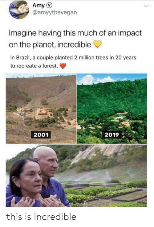 amy: Amy  @amyythevegan  Imagine having this much of an impact  on the planet, incredible  In Brazil, a couple planted 2 million trees in 20 years  to recreate a forest.  2001  2019 this is incredible