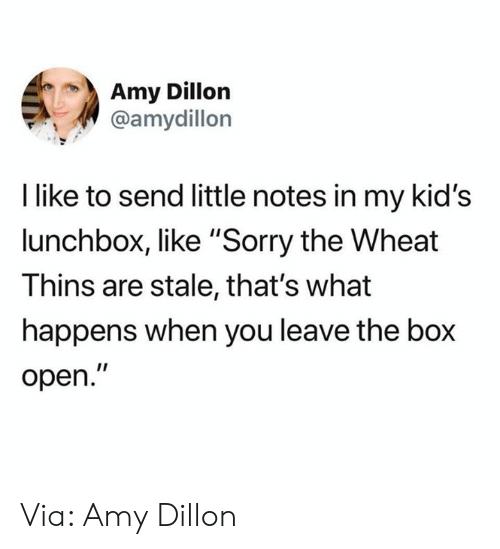 "amy: Amy Dillon  @amydillon  I like to send little notes in my kid's  lunchbox, like ""Sorry the Wheat  Thins are stale, that's what  happens when you leave the box  open."" Via: Amy Dillon"