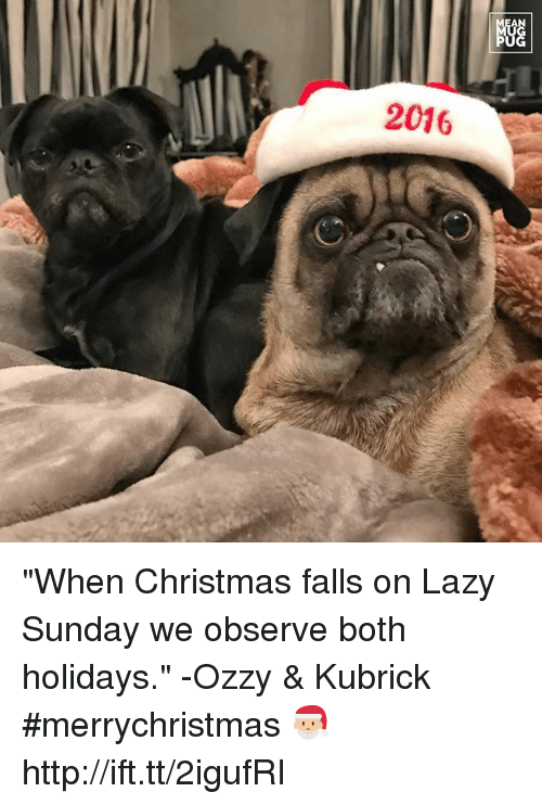 """Lazy, Memes, and Laziness: AN  2016  NGG  阳 """"When Christmas falls on Lazy Sunday we observe both holidays."""" -Ozzy & Kubrick #merrychristmas 🎅🏼 http://ift.tt/2igufRI"""