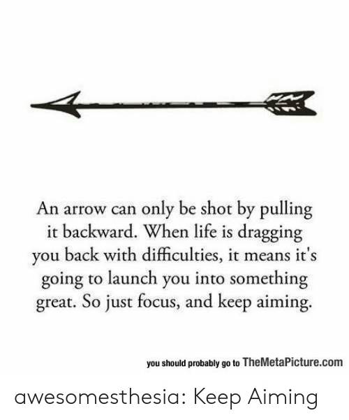 Life, Tumblr, and Arrow: An arrow can only be shot by pulling  it backward. When life is dragging  you back with difficulties, it means it's  going to launch you into something  great. So just focus, and keep aiming.  you should probably go to TheMetaPicture.com awesomesthesia:  Keep Aiming