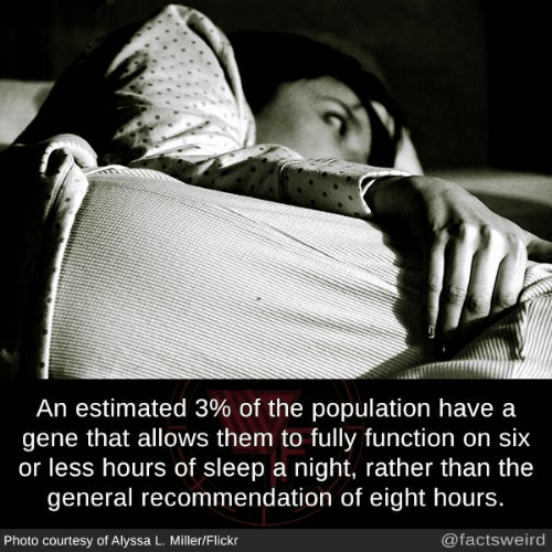 Recommendation: An estimated 3% of the population have a  gene that allows them to fully function on six  or less hours of sleep a night, rather than the  general recommendation of eight hours.  Photo courtesy of Alyssa L. Miller/Flickr  @factsweird