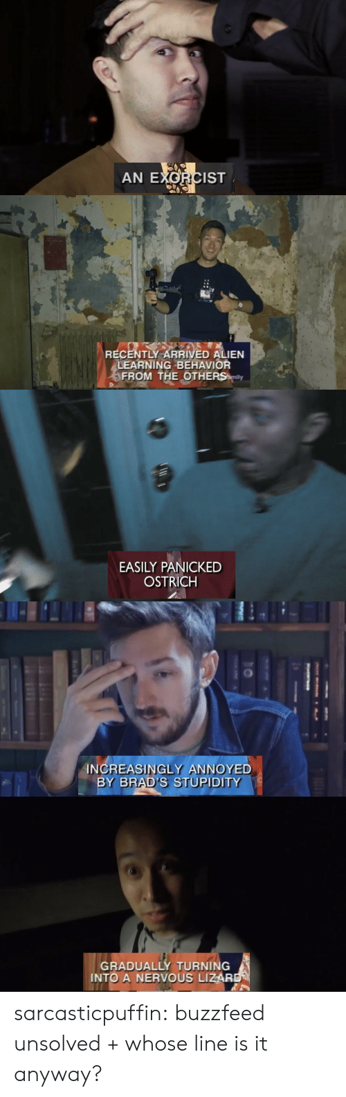 Brads: AN EXORCIST   RECENTLY ARRIVED ALIEN  LEARNING BEHAVIOR  FROM THE OTHERS mily   EASILY PANICKED  OSTRICH   INCREASINGLY ANNOYED  BY BRAD'S STUPIDITY   GRADUALLY TURNING  INTO A NERVOUS LIZAR sarcasticpuffin: buzzfeed unsolved + whose line is it anyway?