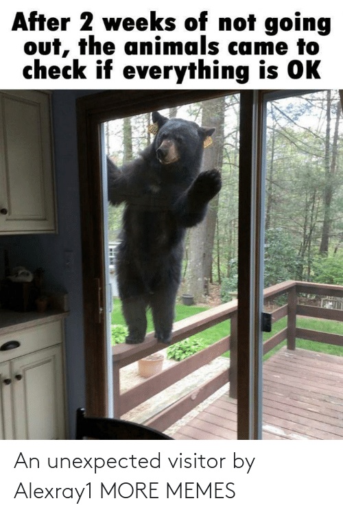 Unexpected: An unexpected visitor by Alexray1 MORE MEMES