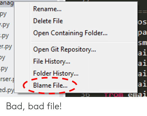Bad, History, and Git: anag  py  Renam...  Delete File  OS  py  pa  Open Containing Folder..  py  Sm  er.py  Open Git Repository..  ai  ai  ai  ai  File History..  -py  rser.p  ed.py  Folder History...  Blame File...  Om emai  50 Bad, bad file!