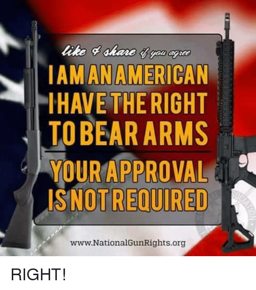 Approvation: ANAM  LIHAVE THE RIGHT  TO BEAR ARMS  YOUR APPROVAL  NOTREQUIRED  www.NationalGunRights.org RIGHT!