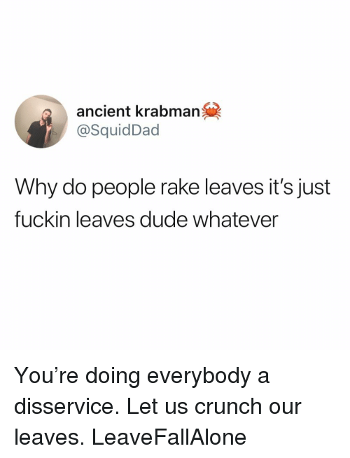 Dude, Funny, and Ancient: ancient krabman  @SquidDad  Why do people rake leaves it's just  fuckin leaves dude whatever You're doing everybody a disservice. Let us crunch our leaves. LeaveFallAlone