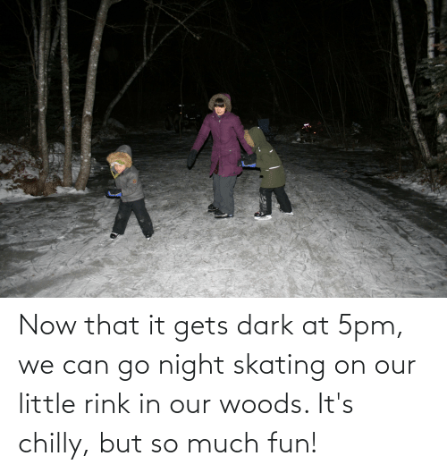 Rink: ANCIK CAT Now that it gets dark at 5pm, we can go night skating on our little rink in our woods. It's chilly, but so much fun!