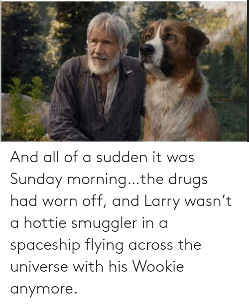 the universe: And all of a sudden it was Sunday morning…the drugs had worn off, and Larry wasn't a hottie smuggler in a spaceship flying across the universe with his Wookie anymore.