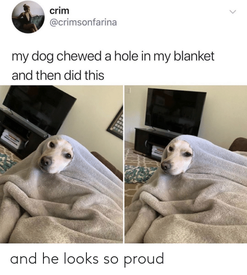 Proud: and he looks so proud