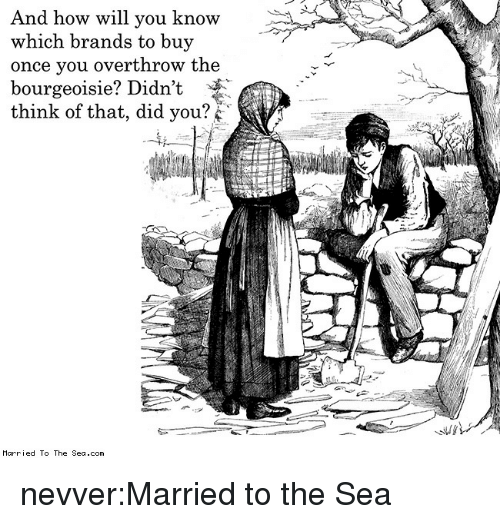 🐣 25+ Best Memes About Marriedtothesea | Marriedtothesea Memes