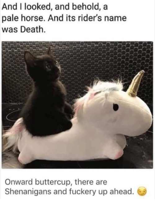 shenanigans: And I looked, and behold, a  pale horse. And its rider's name  was Death.  Onward buttercup, there are  Shenanigans and fuckery up ahead.
