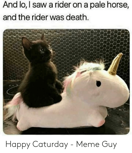 Caturday Meme: And lo, I saw a rider on a pale horse,  and the rider was death. Happy Caturday - Meme Guy