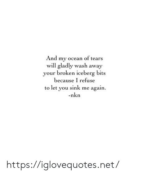 Ocean, Net, and Will: And my ocean of tears  will gladly wash away  your broken iceberg bits  because I refuse  to let you sink me again  nkn https://iglovequotes.net/