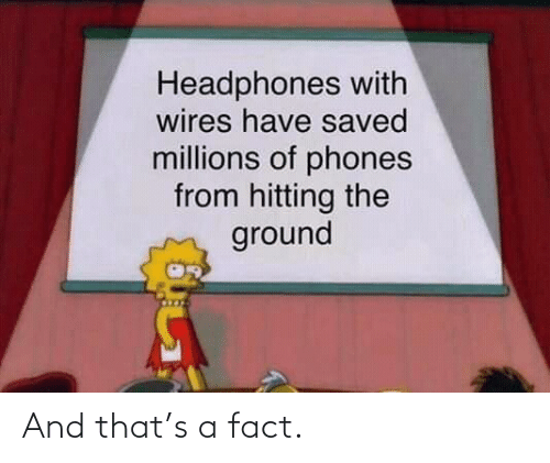 fact: And that's a fact.